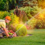 Recomendações para Manutenção de Gramados no Período de Primavera / Verão